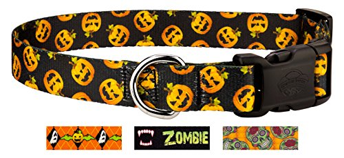Country Brook Design | Deluxe Happy Jack Dog Collar - Large