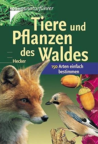 Tiere und Pflanzen des Waldes: 150 Arten einfach bestimmen (Kosmos-Naturführer)