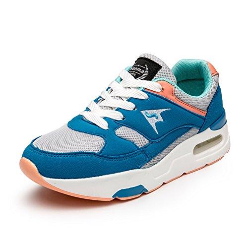 Zapatos de otoño/Deportes y ocio calzan a las mujeres/Zapatos de malla de aire/Marea respirable Coreano zapatos de las mujeres B