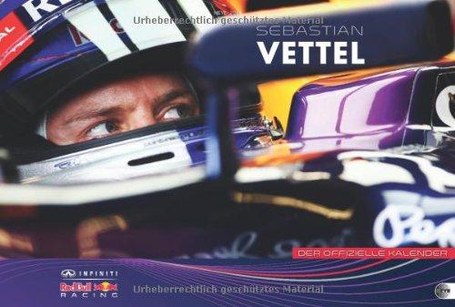 Red Bull Racing Formel 1 2014