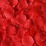 1000-PCS-Valentines-Day-Ruby-Red-Silk-Rose-Petals-Wedding-Flower-Decoration-EpicGifts