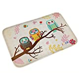 owl kitchen decor iColor Carpets Floor Mat/Cover Floor Rug Indoor/Outdoor Area Rugs,Washable Garden Office Door Mat,Kitchen Dining Living Hallway Bathroom Pet Entry Rugs with Non Slip Backing (Three owls)