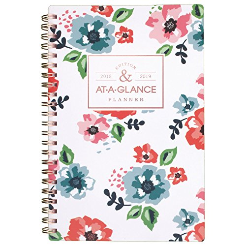 Brands Acco Planner (at-A-Glance Academic Weekly/Monthly Planner, July 2018 - June 2019, 4-7/8