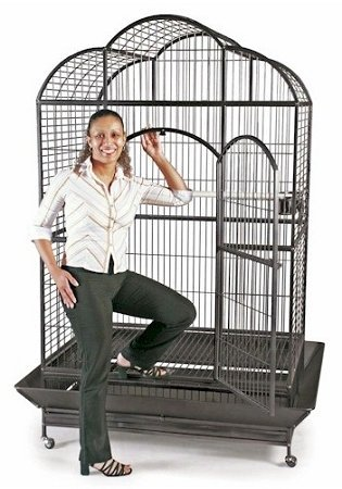 Domestic Pet Bird Cages Silverado Macaw Dome Top Cage Sil...