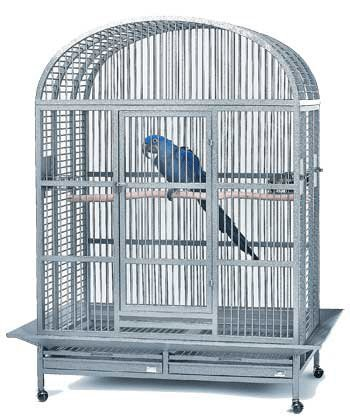 Avian Adventures Hacienda Dometop Bird Cage - 48