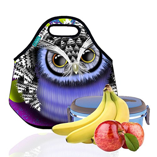 Lunch Tote, OFEILY Lunch boxes Lunch bags with Fine Neoprene Material Waterproof Picnic Lunch Bag Mom Bag (Owl)