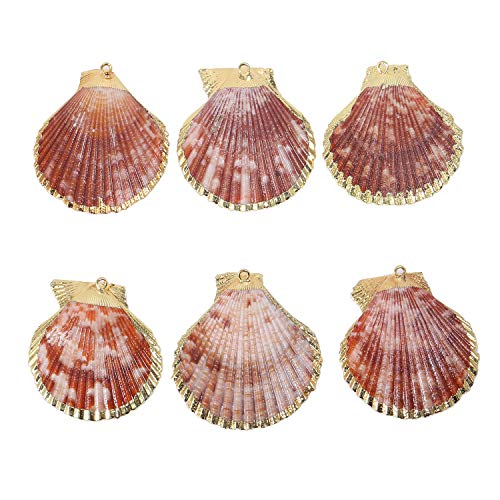 - Wholesale 6 PCS Scallop Shells Pendant Large Clam Sea Shells Charms Bulk for Jewelry Making