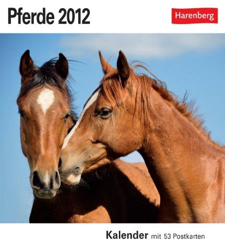 Pferde 2012: 53 Postkarten