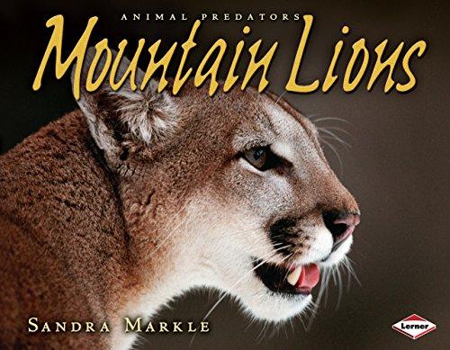 Mountain Lions (Animal Predators)