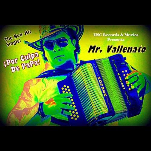 por culpa de papa mr vallenato from the album por culpa de papa august