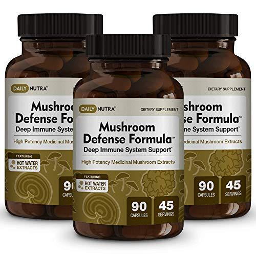 Mushroom Defense Formula - Deep Immune System Support - Medicinal Mushrooms Hot Water Extracted - Reishi, Chaga, Maitake, Shiitake & Turkey Tail (3-Pack)