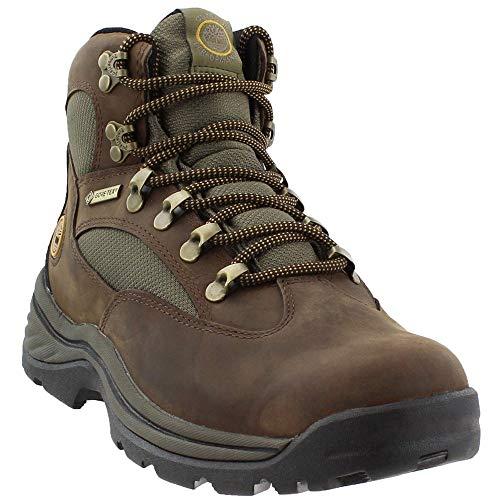 Timberland Women's Chocorua Trail Boot,Brown,8.5 M