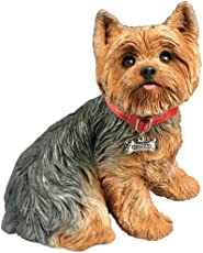 How Long Do Yorkies Terriers Usually Live By Dogmal Com