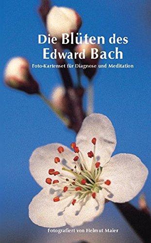 Edition Tirta: Kartenset Die Blüten des Edward Bach Karten – 1. Juli 1999 Helmut Maier Reise Know-How Verlag Bielefeld 3894167882