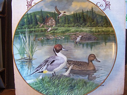 """""""The Pintail"""" by Bart Jerner Collector Plate"""