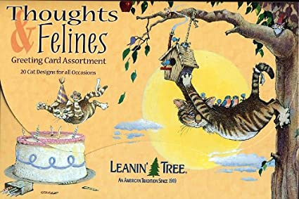 Amazon Thoughts Felines Leanin Tree Greeting Card