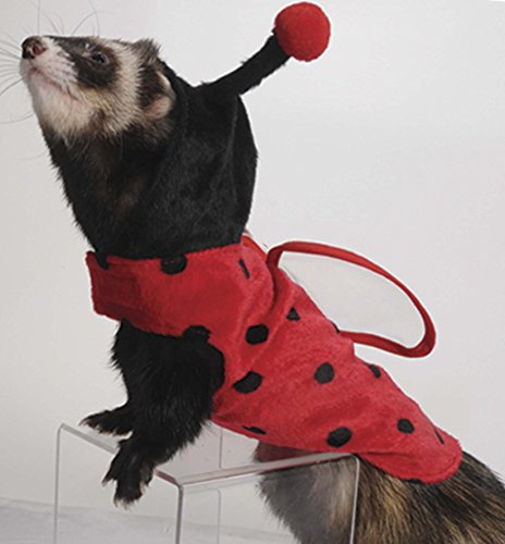 (Marshall Pet Products Ladybug Costume for)
