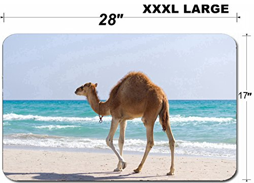 (Luxlady Large Table Mat Non-Slip Natural Rubber Desk Pads IMAGE ID 21464199 Baby camels walking the seashore)