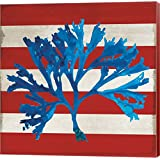 Marine Coral II by Posters International Studio Canvas Art Wall Picture, Museum Wrapped with Colonial Red Sides, 12 x 12 inches