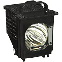 Mitsubishi 915B403001 TV Assembly Cage with Projector bulb