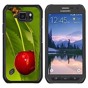 Cubierta protectora del caso de Shell Plástico || Samsung Galaxy S6 Active G890A || Naturaleza Hermosa Forrest Verde 75 @XPTECH