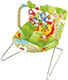 Best Baby Bounce Chairs - Fisher-Price Rainforest Friends Baby Bouncer Review