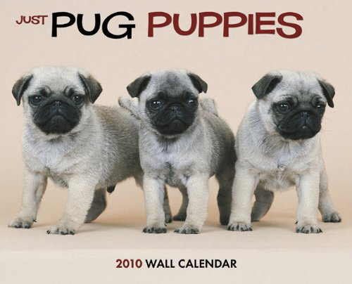 (Just Pug Puppies 2010 Calendar)