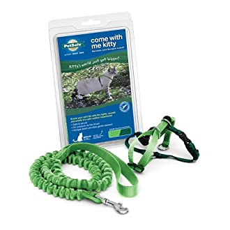 PetSafe Come With Me Kitty Harness and Bungee Leash, Harness for Cats, Large, Electric Lime/Green