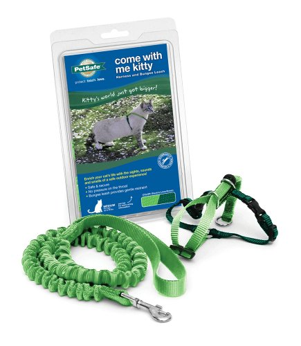 PetSafe Come With Me Kitty Harness and Bungee Leash, Harness for Cats, Medium, Electric Lime/Green