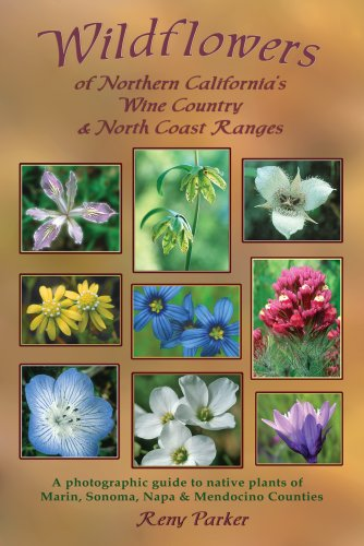 wildflowers-of-northern-californias-wine-country-north-coast-ranges
