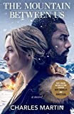 Now a major motion picture starring Kate Winslet and Idris Elba. An atmospheric, suspenseful and gripping story of two people finding love while fighting to survive. When a blizzard strands them in Salt Lake City, two strangers agree to charter a pla...