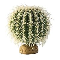Exo Terra Barrel Cactus Terrario Planta, Medio