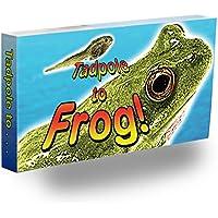 Fliptomania Frog Flipbook by FLIPTOMANIA