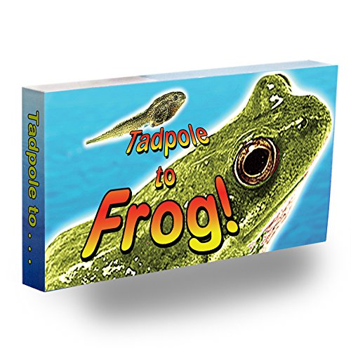 Fliptomania Tadpole to Frog Animation Flipbook