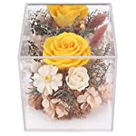 MASOO-Preserved-Rose-Flower-Gifts-for-Women-Mom-Girl-Birthday-Gifts-Christmas-Valentine-Present-Upscale-Immortal-Flowers-Yellow