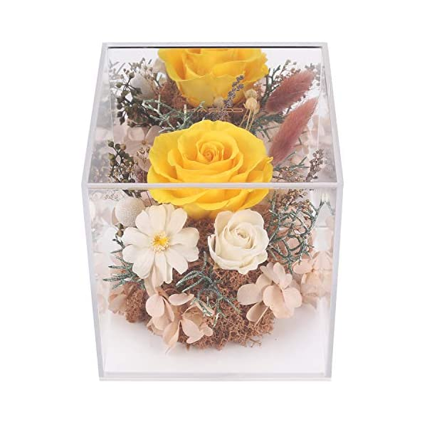 MASOO Preserved Rose Flower Gifts for Women Mom Girl Birthday Gifts Christmas Valentine Present Upscale Immortal Flowers (Yellow)