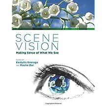 Scene Vision: Making Sense of What We See (MIT Press)