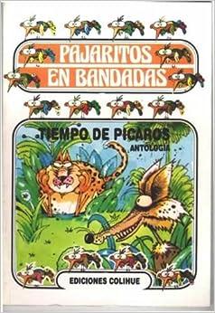 Tiempo de Picaros (Spanish Edition)