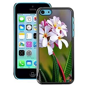 Snap-on Series Teléfono Carcasa Funda Case Caso para iPhone 5C , ( White Flowers )