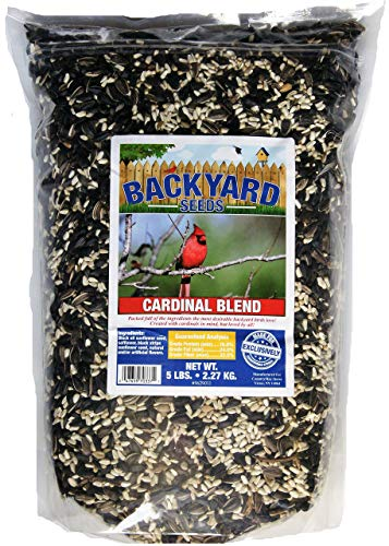 Backyard Seeds Black Oil Sunflower and Safflower Cardinal Blend Bird Seed 5 Pounds