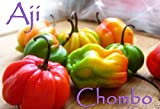 10 Seeds (Aji Chombo Pepper Seed ~ Rare Scotch Bonnet Variety From Panama,!