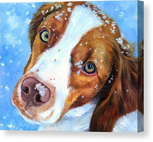 """Snow Baby - Brittany Spaniel"" by Lyn Cook, Canvas Print Wal"