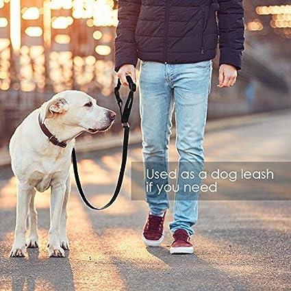 Just Pet Zone Regolabili e durevoli con Imbottitura Elastica in Nylon Set di 2 Cinture di Sicurezza per Cani