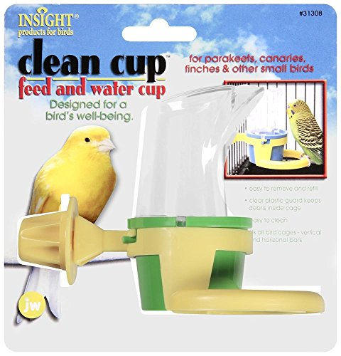Clean Cup Feed Water