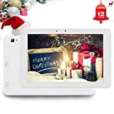 Android Tablet PC LCD Monitors HD Display Monitor-Mini 9 Inch Kids Wifi Touch Screen With Multi-Function Screen with HDMI and AV Input and Output--By Flysight