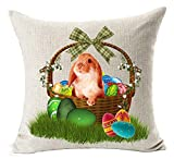 easter basket covers - Spring Gift Season's Greetings Happy Easter Beautiful Color Eggs Flowers Basket Adorable Bunny Rabbit Cotton Linen Throw Pillow Case Cushion Cover NEW Home Office Indoor Decorative Square 18 Inches