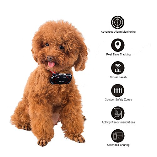 PABY Pet Tracker, 3G GPS Pet Tracker & Activity Monitor Dogs Cats Smart WIFI Virtual Fence Rechargeable Waterproof Tracker Pet Safe Wireless Fence Pet Finder Android/iPhone by PABY (Image #2)