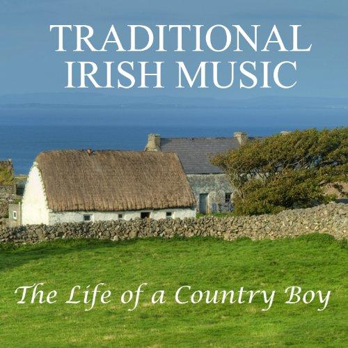 Traditional Irish Music: The L...