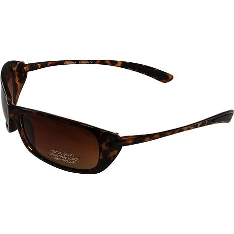 662c3ef33bc Amazon.com  Birdz Eyewear Women s CatBird Ladies Sunglasses ...
