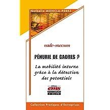 Pénurie de cadres?: La mobilité interne grâce à la détection des potentiels (Pratiques d'entreprises) (French Edition)